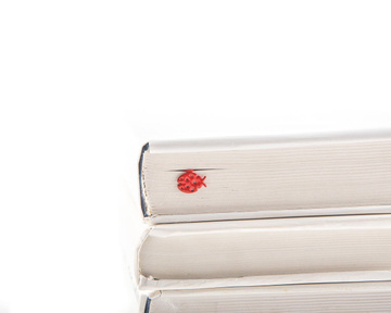 "Metal Bookmark ""Ladybug"" by Atelier Article, Red"